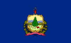 Vermont state flag.png